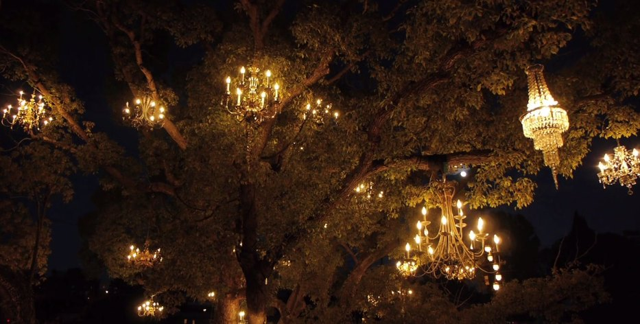 Chandelier Tree in Silver Lake