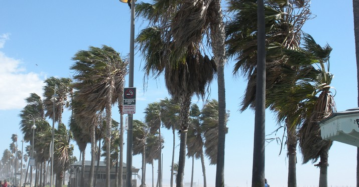 Venice Beach Wind Gusts
