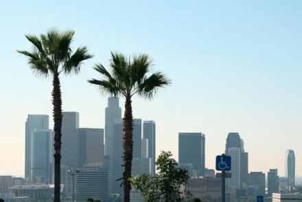 Downtown L.A. with Palm Trees