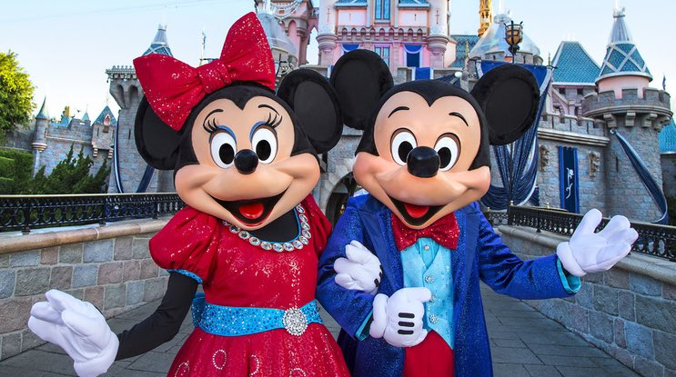 disneyland bans selfie sticks starting june 30. Black Bedroom Furniture Sets. Home Design Ideas