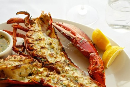 The Lobster Grilled American Lobster