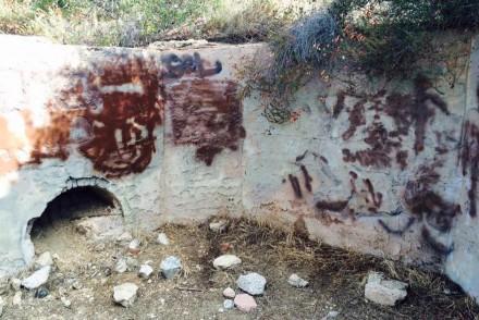 Echo Mountain Bear Enclosure