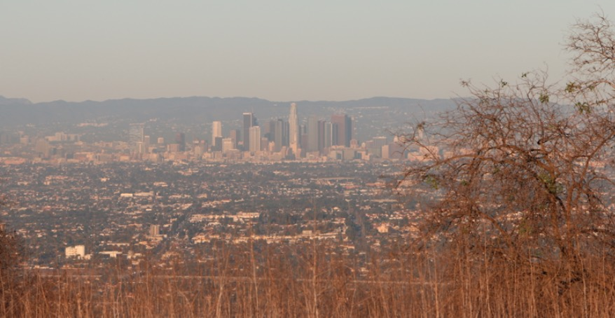 Turnbull Canyon View