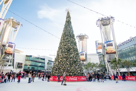 LA Live Ice Skating Rink