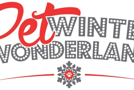 Pet WInter Wonderland