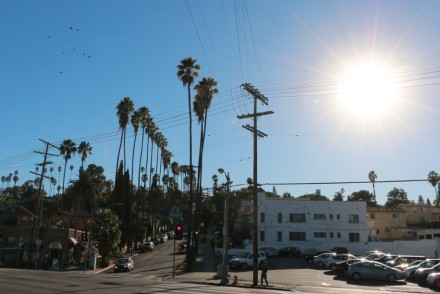 Sunset Blvd in Silver Lake