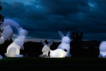 Intrude Sculptures
