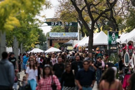 Upland Lemon Festival featured