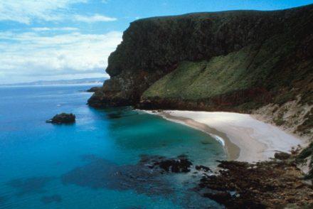 San Miguel Island Cliffs