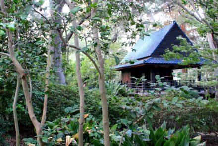 Descano Gardens Japanese Gardens