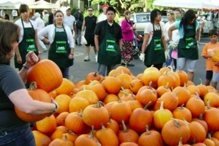 santa monica farmers market pumpkin featured