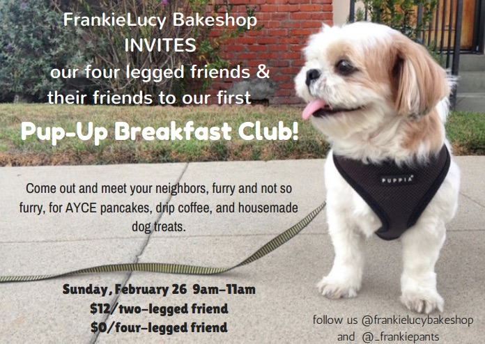 frankie lucy pup up brunch