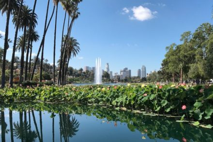 Echo Park Lake June 2017