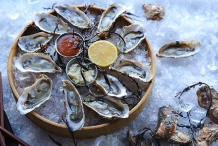 chaya oysters featured