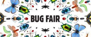 Bug Fair at NHMLA