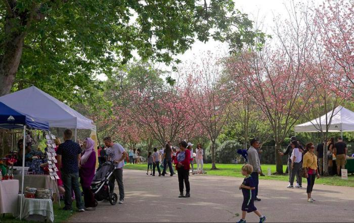 Tth Annual Huntington Beach Cherry Blossom Festival