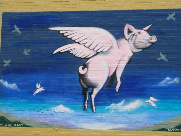 826LA@Hammer: Pigs Will Fly!