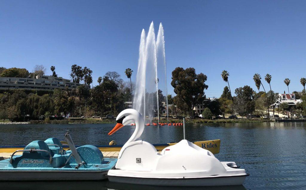 Swan pedal boat Echo Park Lake
