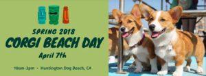 Spring 2018 So Cal Corgi Beach Day