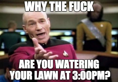 Lawn Drought Meme