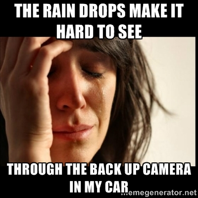 First World Problems With Car