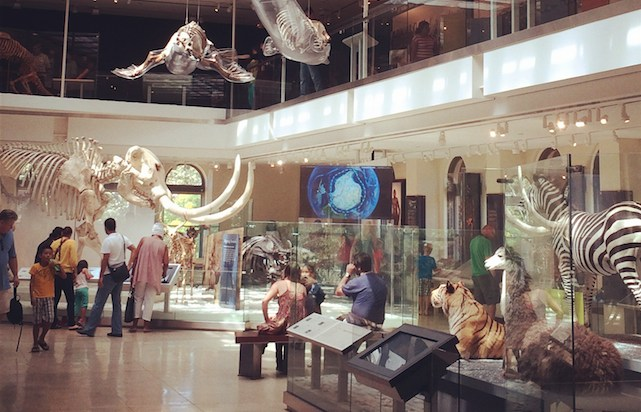 Visit Natural History Museum Los Angeles