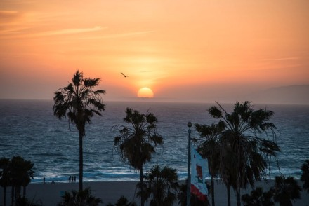 Venice Beach Sunset at High Rooftop Lounge