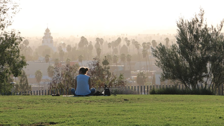 Barnsdall Park afternoon