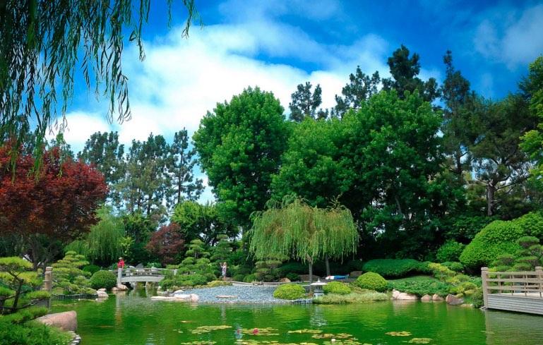 Earl Burns Japanese Garden