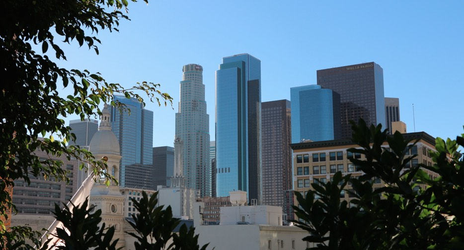 DTLA View from Japanese Garden