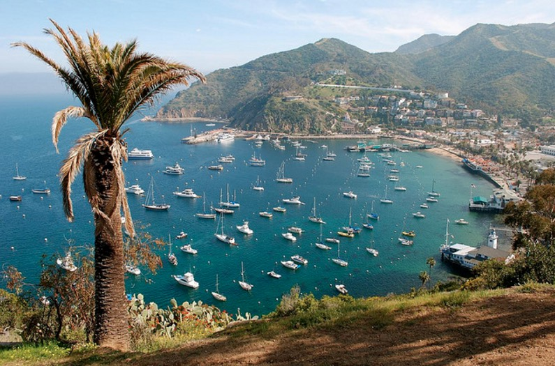 16 Fun Things To Do On Catalina Island If You Happen To Make