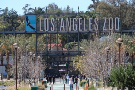 Los Angeles Zoo Entrance