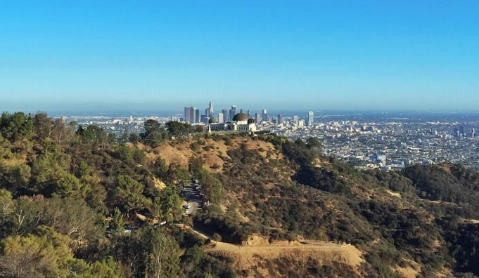 Mt. Hollywood View