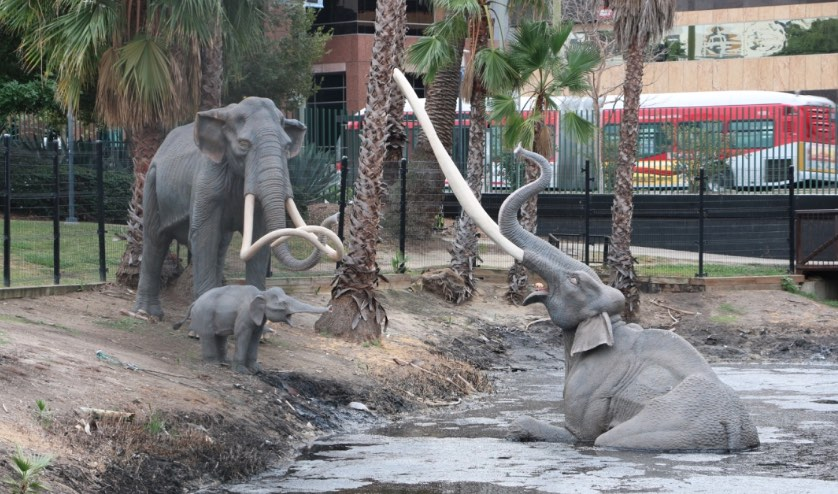 Image result for la brea tar pits