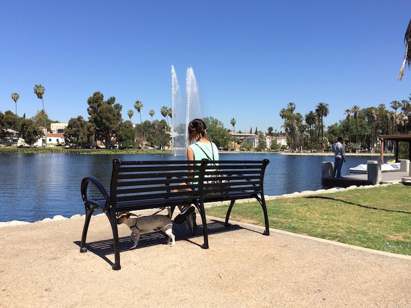Echo Park Lake bench