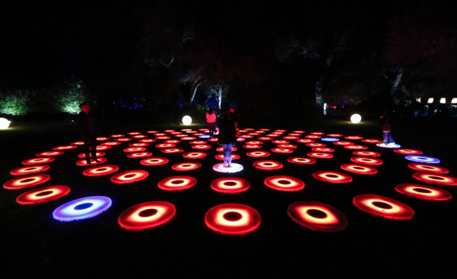 Luminous Lawn