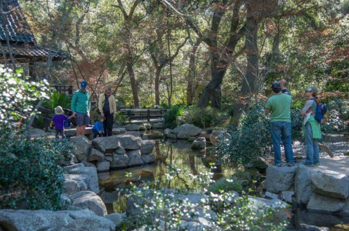 Descanso Gardens presents Wet & Wonderful a Celebration of Water