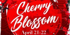 Monterey Park Cherry Blossom Festival 2018