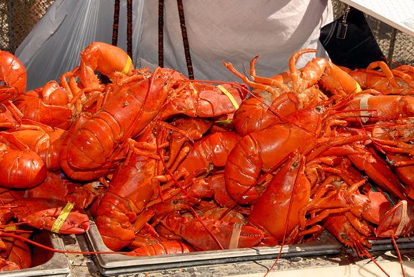 Long Beach Lobster Festival 2018