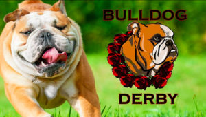 bulldog-derby-santa-anita-featured