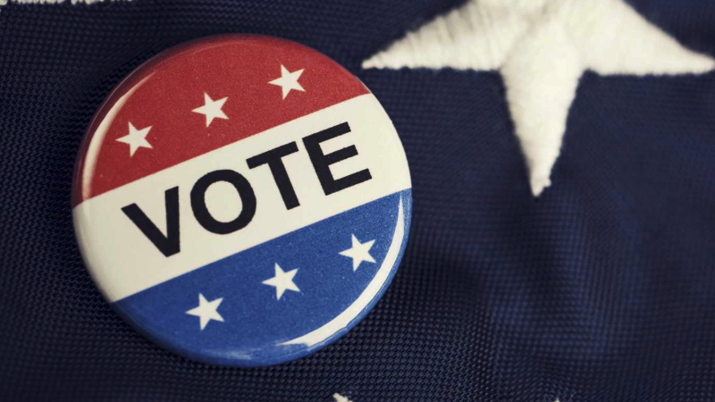 voting-rights-and-wrongs-hammer