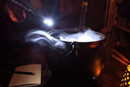 Wizard's Den Cauldron