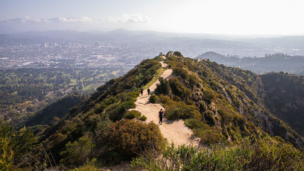 Griffith Park Trail Near Glendale Peak