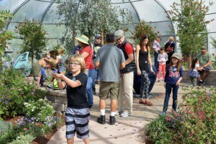 South Coast Botanical Garden SOAR Pavilion